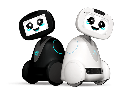 buddy-companion-robot