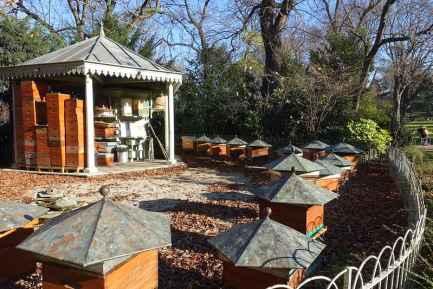 apiculture Paris
