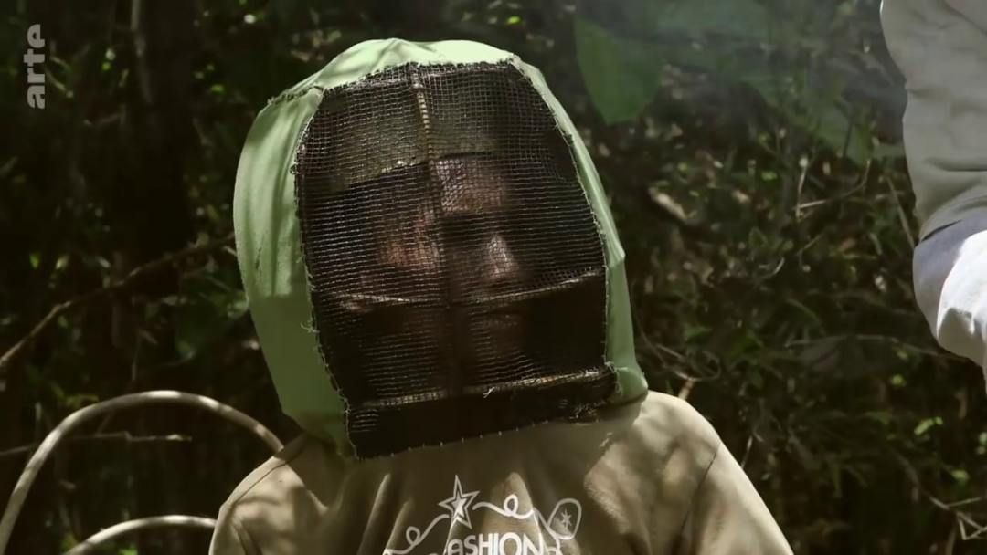 combinaison abeille
