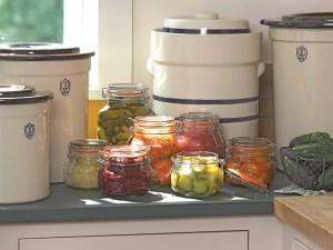 fermentation kit