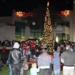 Large crowd enjoys tree lighting ceremony