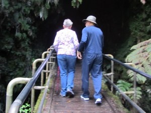 Tourist must walk across bridge to gain entrance to the Thurston Lava Tube.  Photo by Bobbie Green