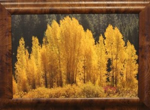 : 'Golden Glow' is a photo on canvas by photography artist Walt Adler. Photo by Teri Nehrenz
