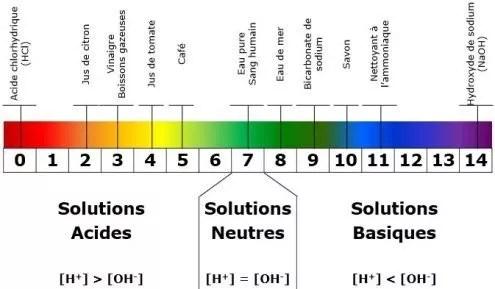 Echelle pH : du pH acide au pH basique