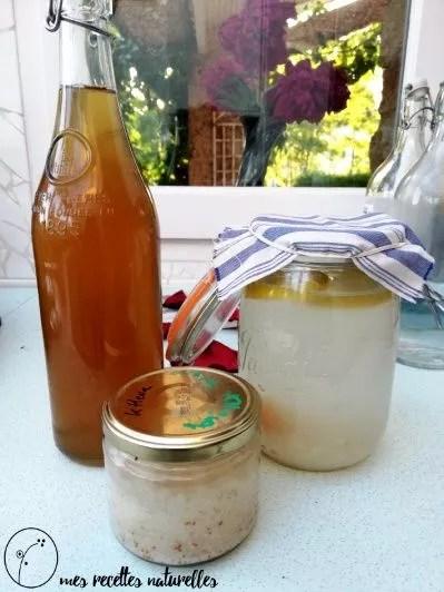 kéfir et kombucha maison : les boissons probiotiques pour entretenir sa santé