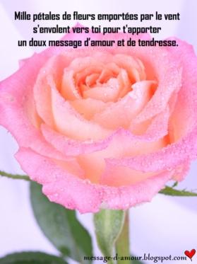 Paroles Quelques Mots D Amour : paroles, quelques, amour, Petits, D'amour, Message