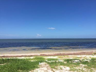 Massiel's Beach.jpg