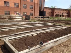 After Upper Garden2