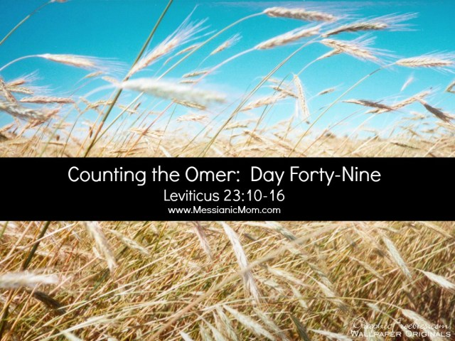 Day Forty Nine Omer Count