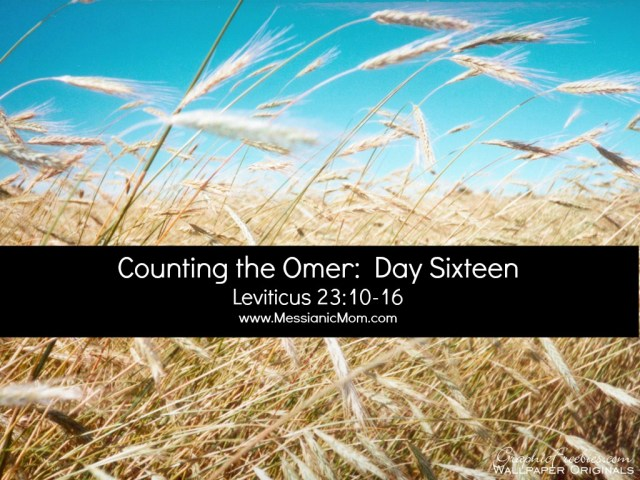Day Sixteen Omer Count