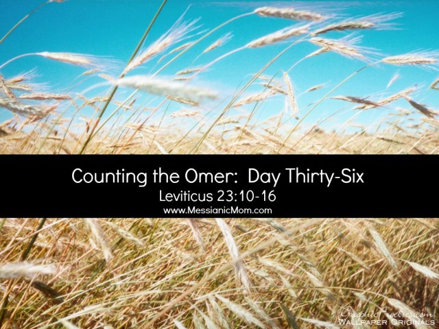 Day Thirty Six Omer Count