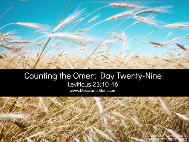 Day Twenty Nine Omer Count