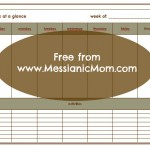 Messianic Mom's Week at a glance