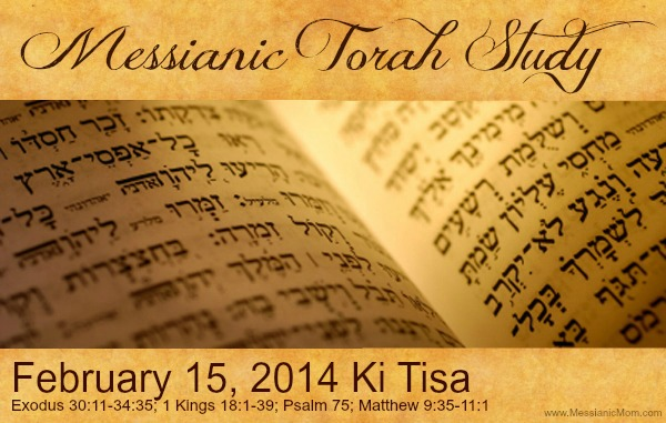 Torah Portion Ki Tisa