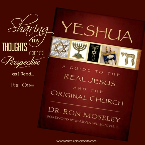 Thoughts and Perspective on Yeshua by Dr. Ron Moseley