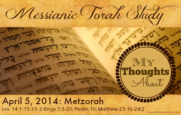 Thoughts on Metzorah Torah Portion
