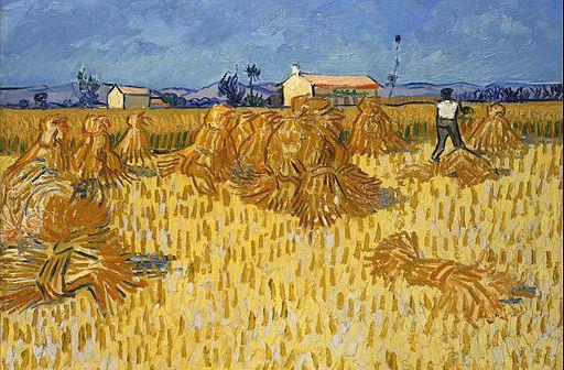 corn harvest painting