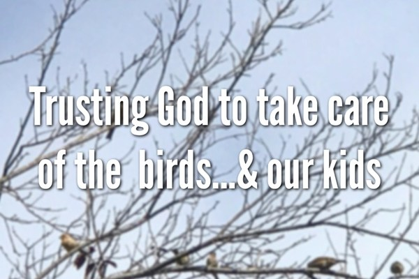Trusting God to Take Care of the Birds…& Our Kids