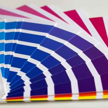color palette colors colours paint