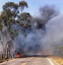 fogo-rodovia