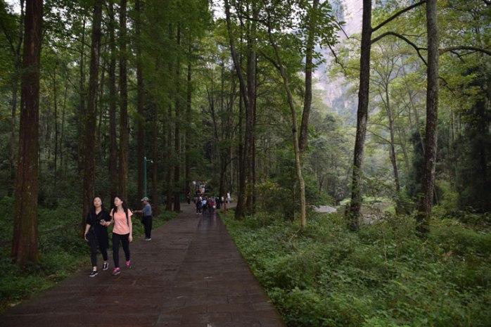 zhangjiajie-sentier