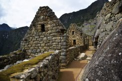 Machu Picchu rue