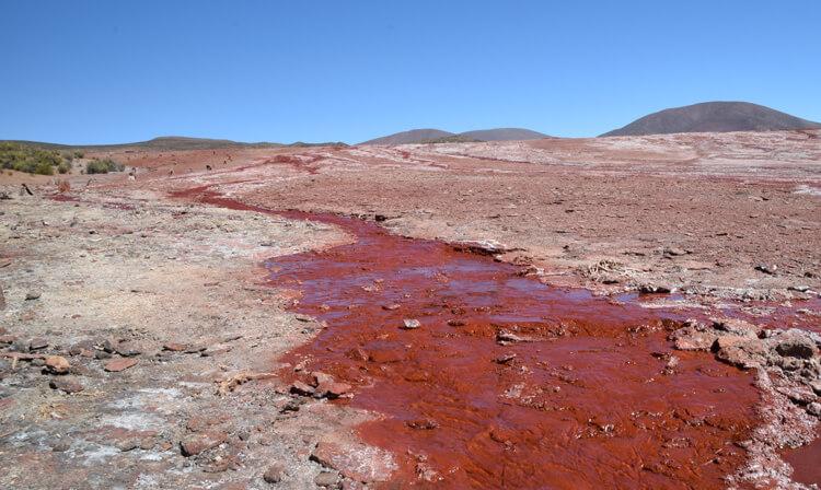 Iquique laguna roja veine