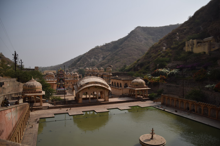 monkey-temple-jaipur