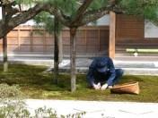 Kyoto - Temple de Ginkakuji, jardins