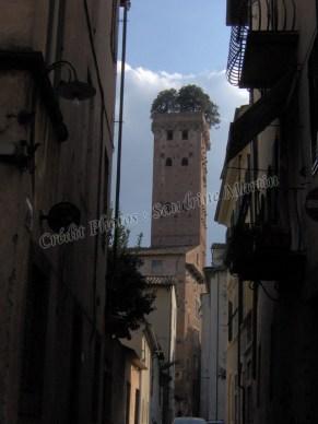 Lucques - Torre Guinigi