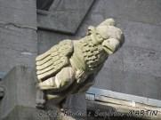 Mons - Le collégiale Sainte-Waudru, l'une des gargouilles