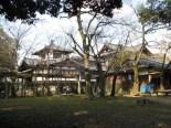 Nara - Parc