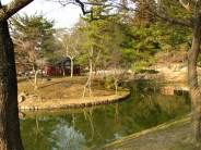 Nara - Temple de Todaiji, étang