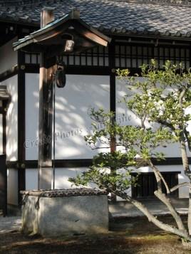 Tokyo - Château de Nijo, jardins