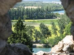 Vaucluse - Avignon - Vue du Rocher des Doms