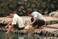 Yangshuo - Bicycle ride, along the river, local people killing a dog