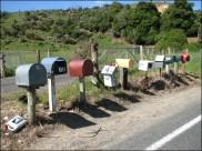 Dunedin et sa Otago Peninsula - Chercher l'erreur....