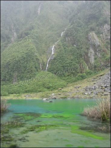 Entre Wanaka et Pukekura - Fox glacier