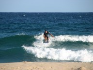 Bondi Beach - Plage, surfeur