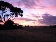 Kangaroo island - Kaiwarra - Paysage