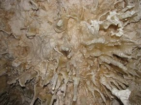 Kangaroo island - Kelly Hill Caves