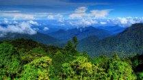 Cameron Highlands - Gunung Brinchang