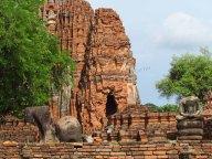 Ayutthaya - Temple 'Wat Maha Tat'