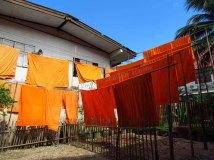 Chiang Mai - Temple 'Wat Pundtow', jour de lessive pour les moines