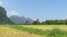 Vang Vieng - Sur le chemin