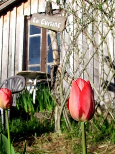 Tarn - Vaour - Le Jardin d'Emerveille - Extérieur