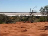 Sur la route d'Uluru