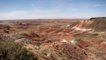 Arizona - Parc national Petrified Forest - North point