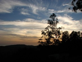 Californie - Santa Barbara - Vue sur Santa Barbara depuis Franceschi Park