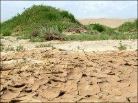 Dunes de sable 'Khongor', terres asséchées